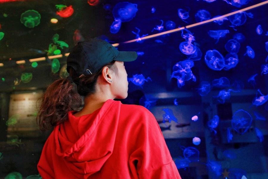 台南旅遊景點/安平定情碼頭-德陽艦園區,全台獨一無二的軍艦博物館