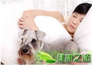 養寵物怎麼預防疾病 - 康途健康百科