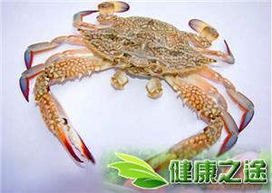 活螃蟹怎麼保存 - 康途健康百科