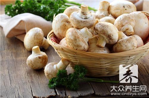 茶樹菇怎麼做好吃?茶樹菇的做法 - 康途健康百科