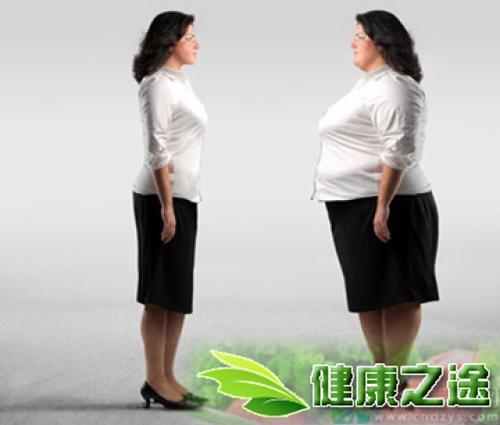易胖體質與易瘦體質怎麼辦 - 康途健康百科
