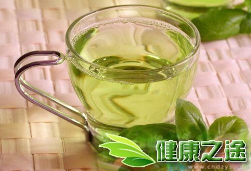 飲用什麼減肥茶有用? - 康途健康百科
