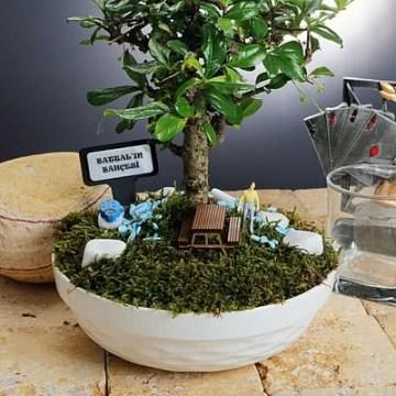 Kişiye Özel Minyatür Bonsai Bahçesi