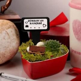 Sevgiliye Yılbaşı Hediyesi Mini Bahçe