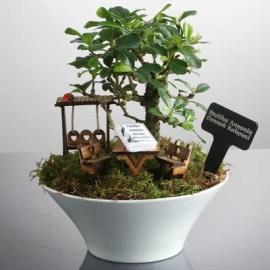 Anneye Doğum Günü Hediyesi Minyatür Bahçe