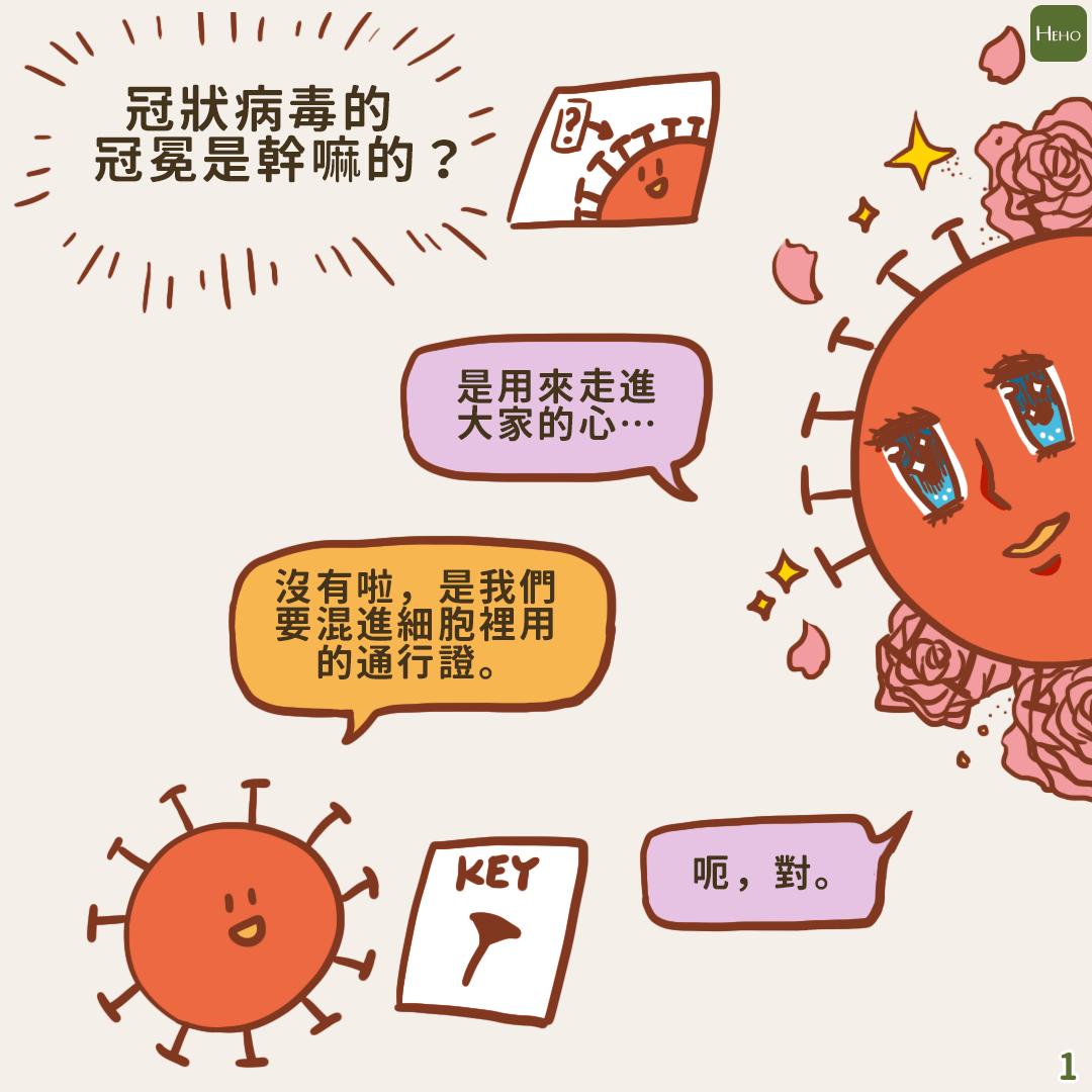 武漢肺炎/ 冠狀病毒入侵人體漫畫指南 | 蕃新聞