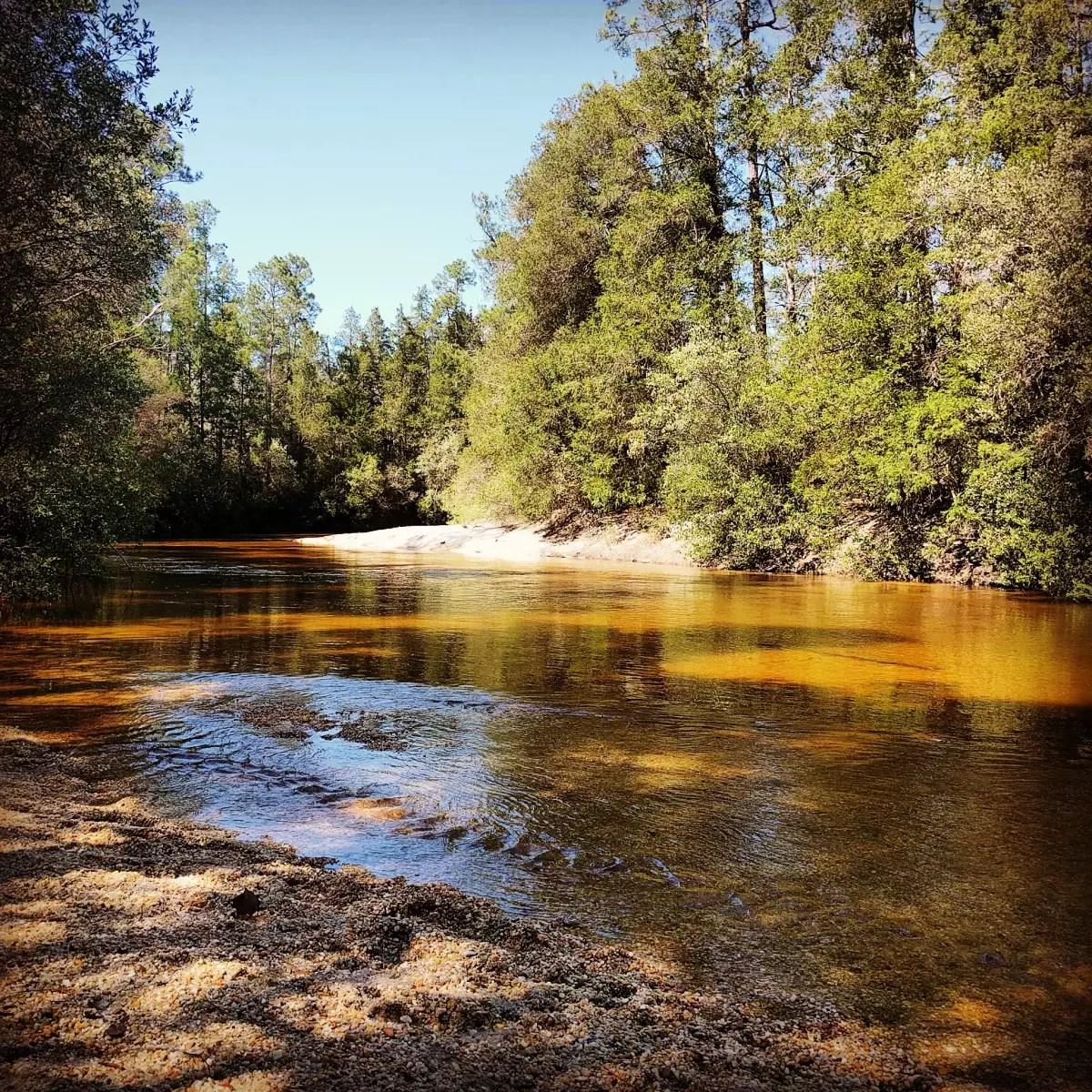 Coldwater Creek Denver