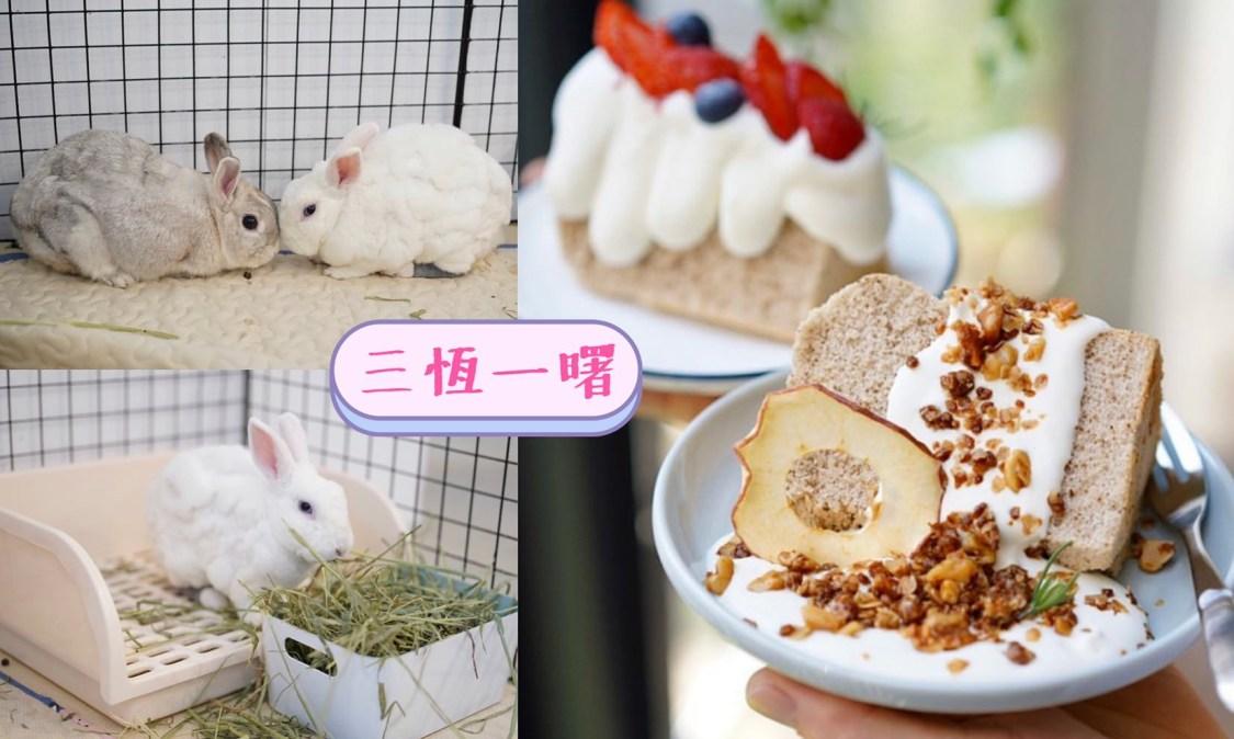 【桃園美食】中壢區新開幕『三恆一曙』兔兔友善咖啡廳,二樓有兔兔專屬跑跑區!