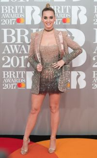 Brit Awards 2017: Red Carpet Dresses And Outfits You Need ...