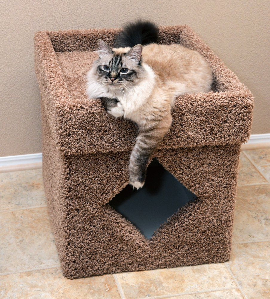 8 Handsome Ways To Hide Your Cat39s Litter Box Huffpost