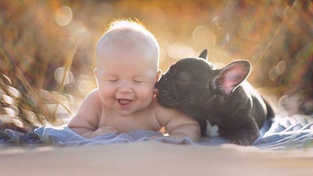 baby and french bulldog best friends are almost too cute to