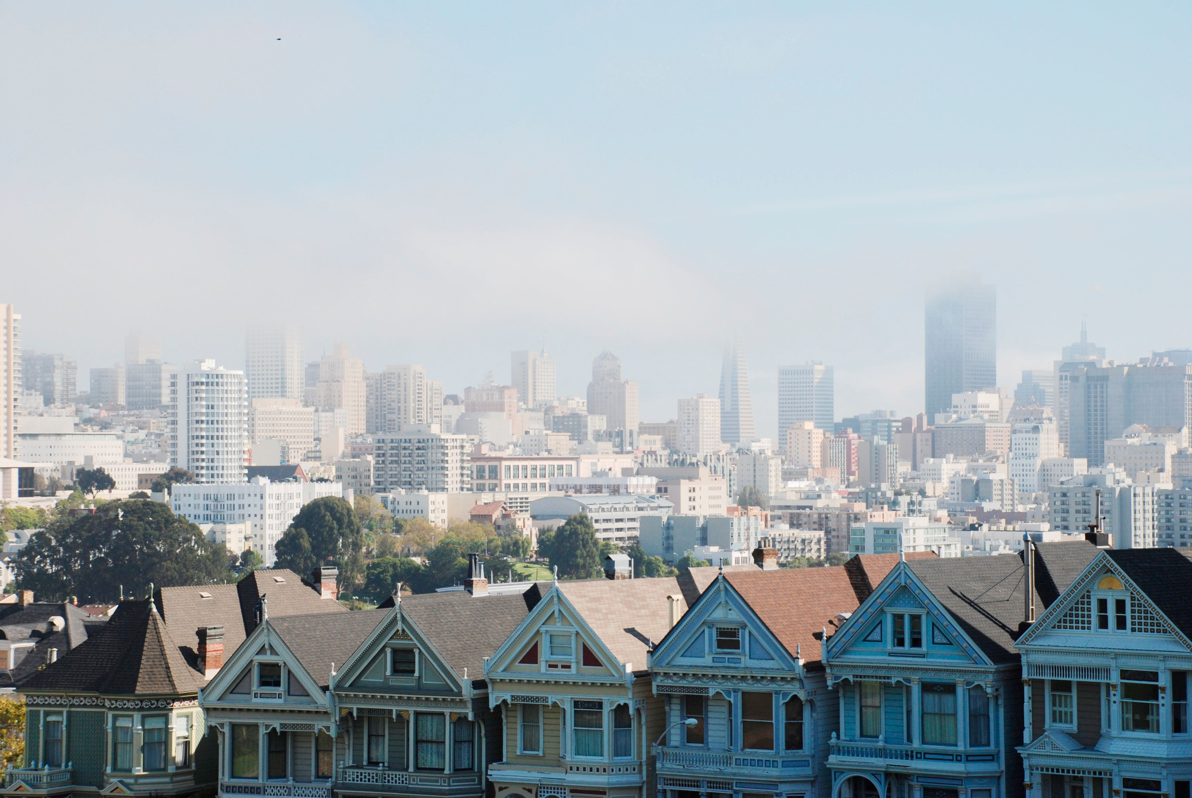 There S A Profoundly Simple Explanation For San Francisco