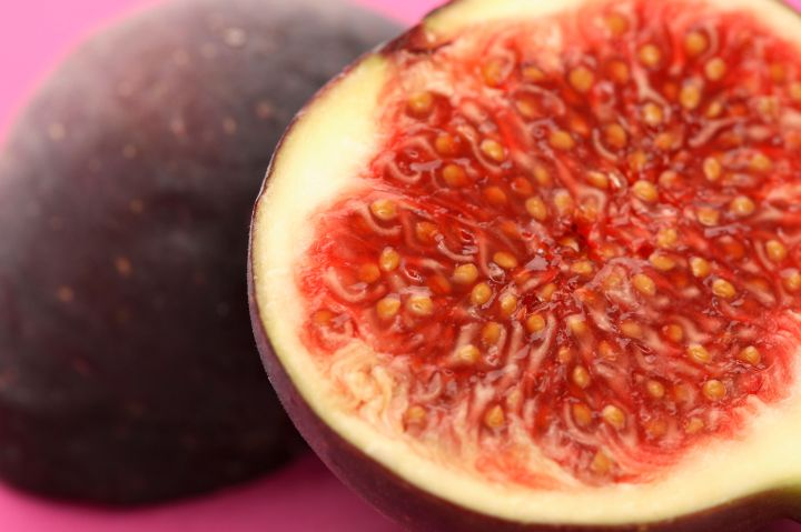 Close up of a fig.