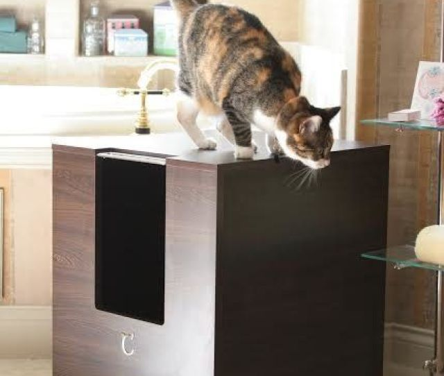 These  Cat Furniture Pieces Make Your Home More Chic Than Your Actual Furniture