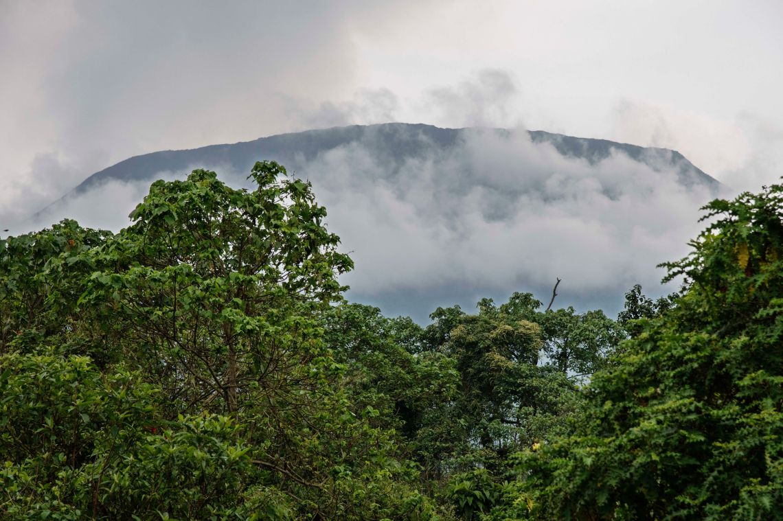 A view from the plains of Mount Nyiragongo in the Virunga National Park