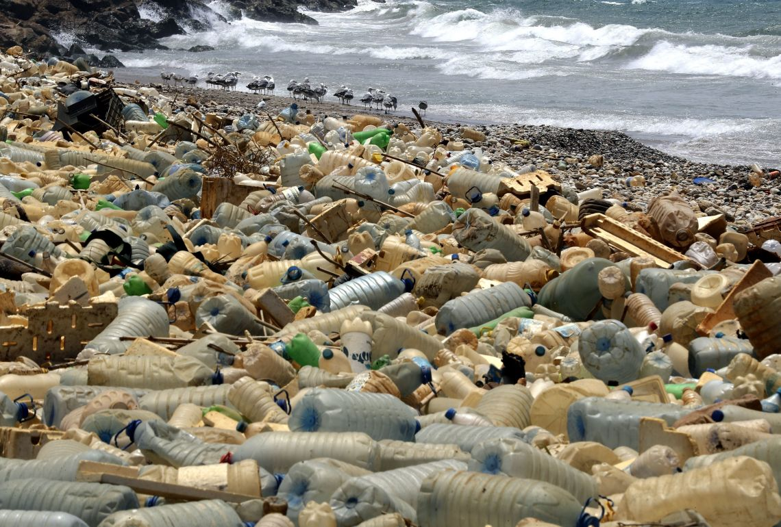 Let's Fix Our Global Plastic Problem And Clean Up Our Oceans