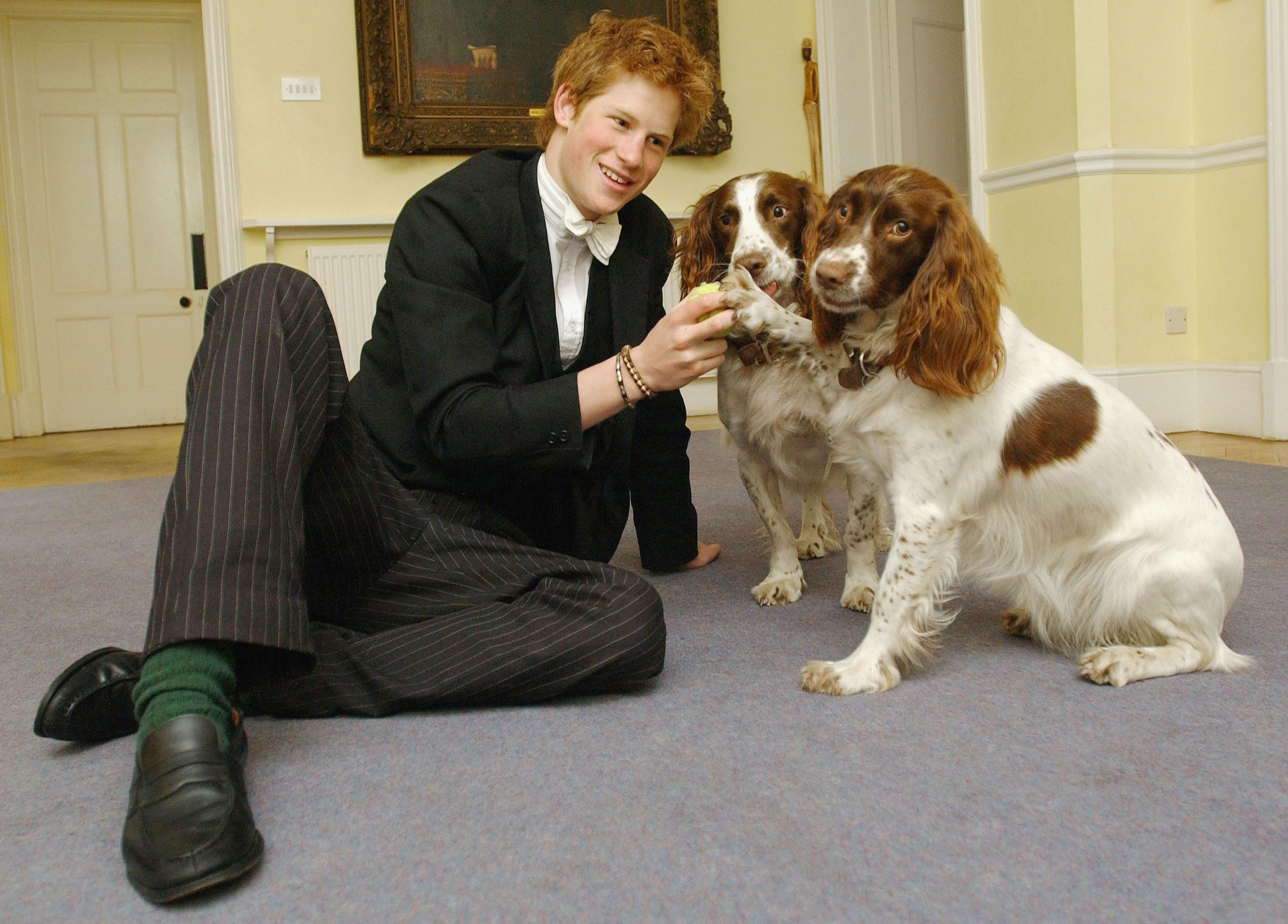 Prince Harry plays with Rosie and Jenny, two dogs owned by Andrew Gailey, the housemaster of the Manor House, in March 2003.