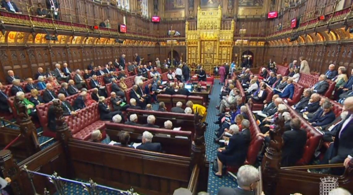 The House of Lords has the main job of 'sifting' the statutory instruments
