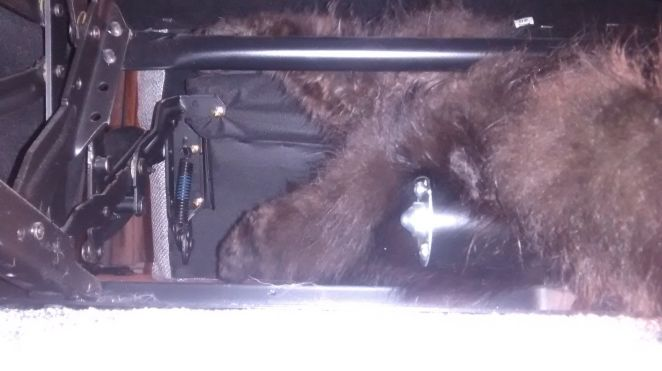 """This stray cat wedged itself inside a family's electric reclining couch in Bristol, southwest England, in January. """"The tail"""