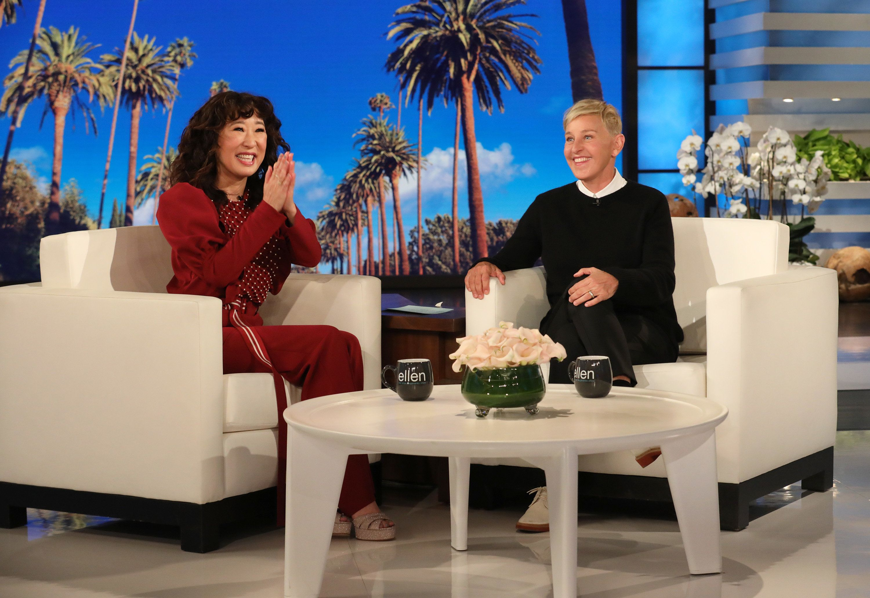 'ellen ' Sandra Reveals Explain 'snl' Parents Huffpost