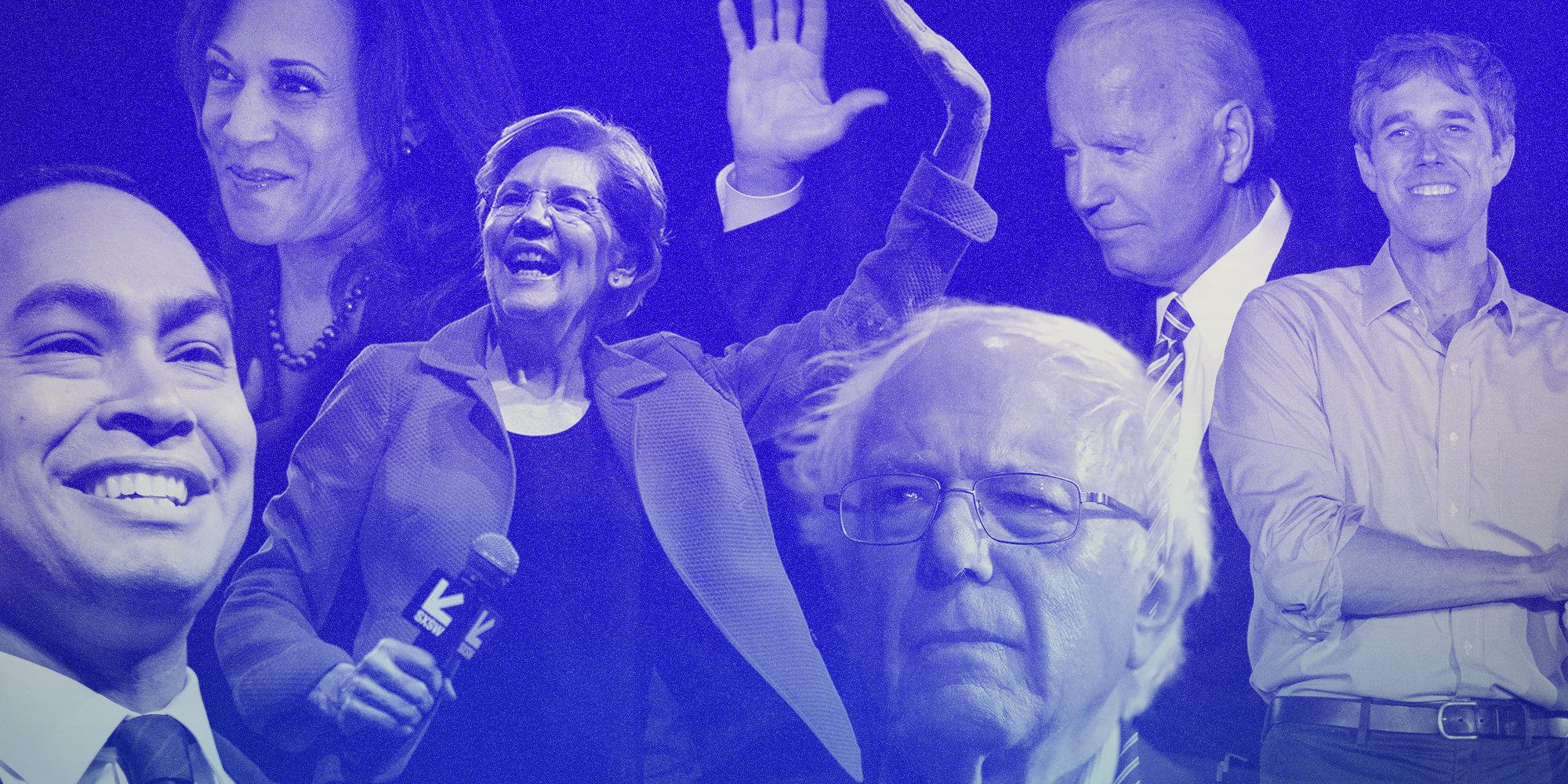 every 2020 democrat wants