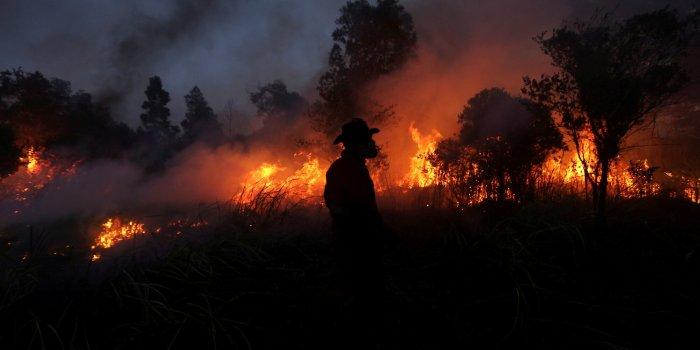 Συνεχίζεται η μάχη με τις φλόγες στα πύρινα μέτωπα της χώρας ...