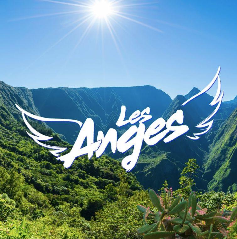 Un maire de La Réunion a été agressé par des participants à l'émission...