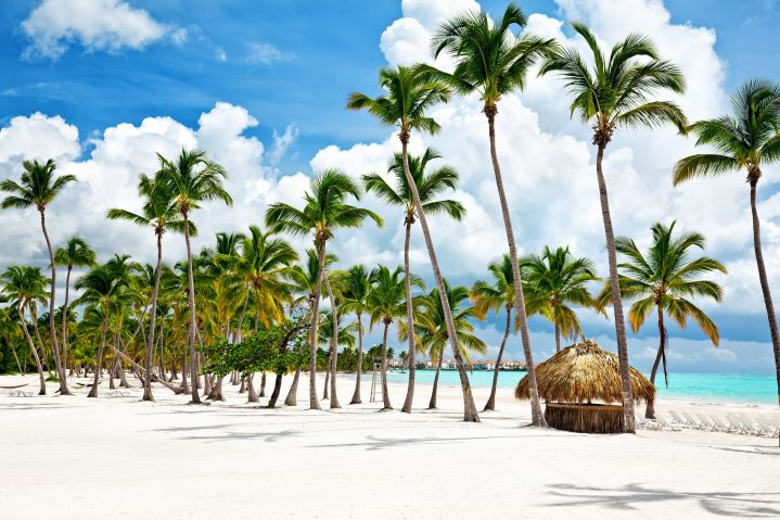 Destinations in the Dominican Republic likePlaya Bavaro have been trending on Trivago.