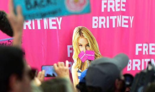 Fans and supporters of Britney Spears gather outside the courthouse in Los Angeles as she speaks before a judge on Wednesday.