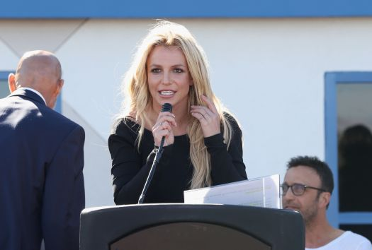 Britney Spears' Attorney Asks To Resign From Conservatorship Role 2