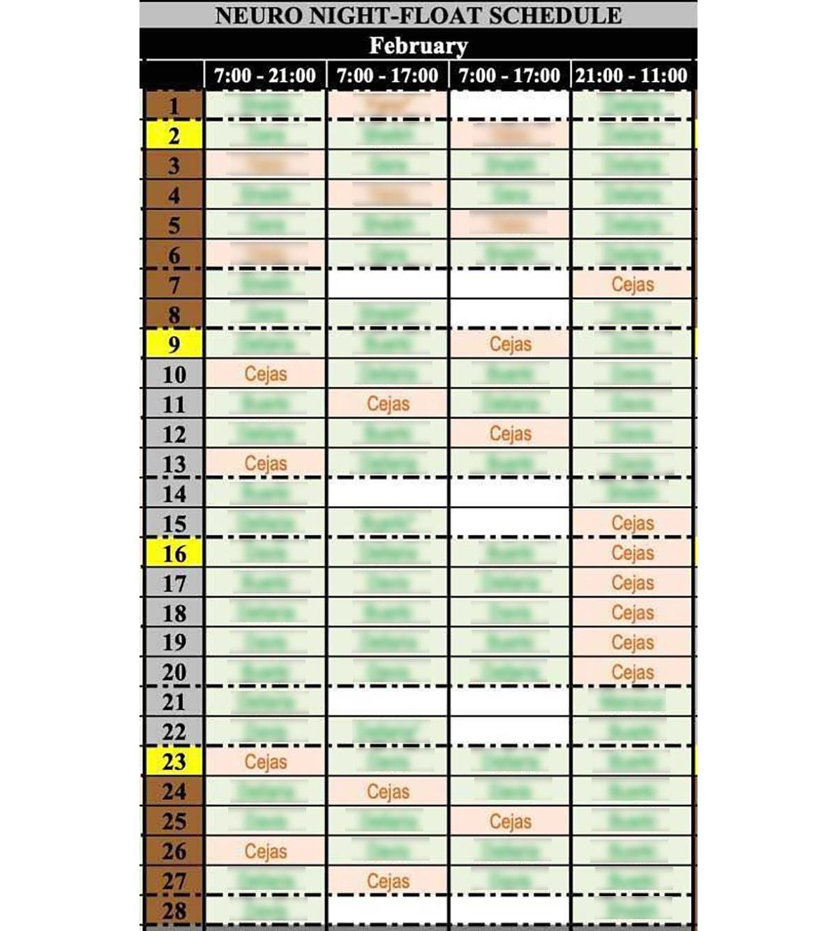 A copy of Cejas's night-shift schedule one year during her neurology training program. During several months, she had t