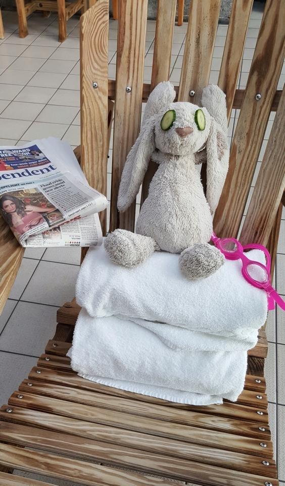 Отель в Ирландии устроил роскошный отдых плюшевому зайцу