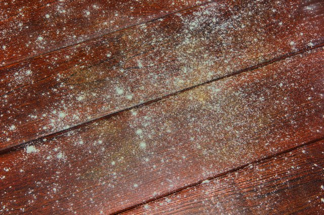 Removing Mold From Wood Furniture Hunker