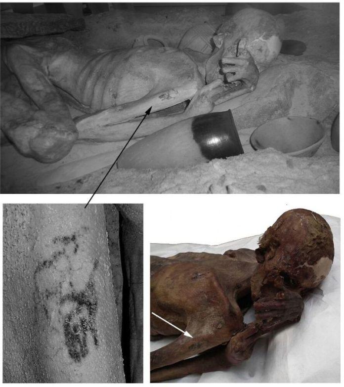 la Momia egipcia