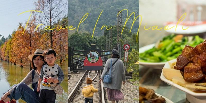 苗栗景點|落羽松秘境、必嚐客家菜、聽蟲鳴民宿,景點+住宿+美食 親子行程完整分享