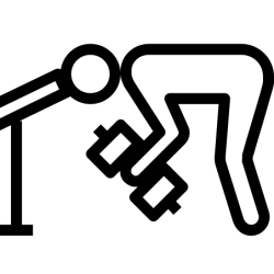 Workout Icon Free Download PNG and Vector
