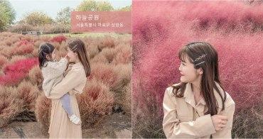 【韓國首爾】熱門ig景點 - 天空公園油畫波波草原、仙級粉紅芒草、兩水頭,kkday半日遊