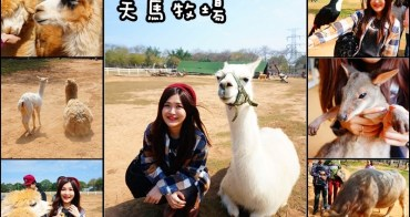 【台中外埔】天馬牧場 - 小孩的動物樂園 看草泥馬超可愛!羊駝