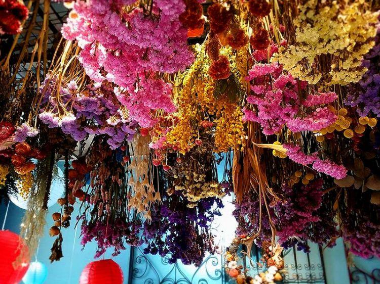 『嘉義市區_風箏旅人』帶您進入色彩繽紛的花花世界,將祝福毫無保留的保存下來。