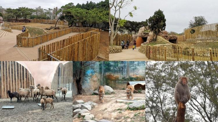新竹市立動物園│新竹動物園交通、門票、停車場、美食、附近景點,一次告訴你!