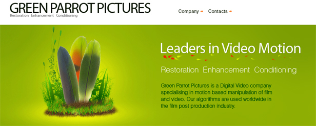 Google Acquires Green Parrot Pictures