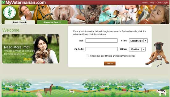 Google Powered Search Tool For Pet Owners Launches
