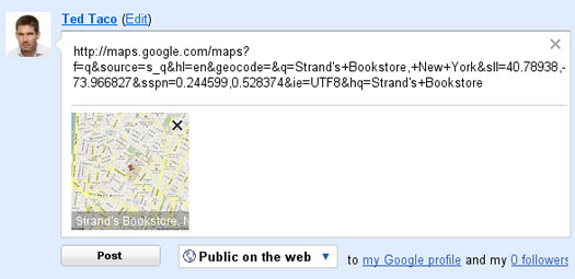 Google Maps Preview in Buzz
