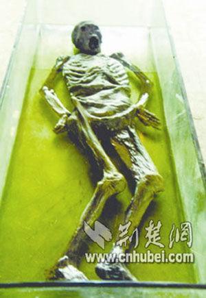 中國古尸第一案:珍貴戰國古尸慘遭毀壞(圖)_資訊_鳳凰網