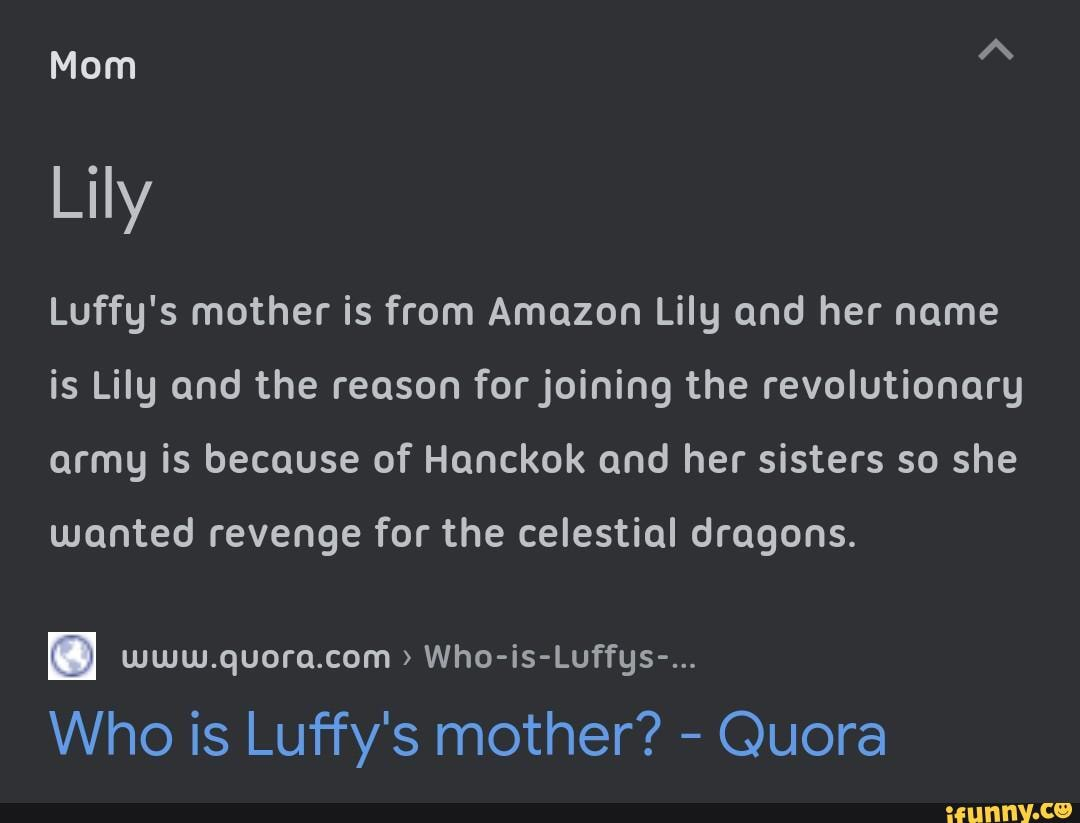 What if luffy's mom was a celestial dragon from the donquixote family who defected married admiral dragon, and then got killed. Mom Lily Luffy S Mother Is From Amazon Lily And Her Name Is Lily And The Reason