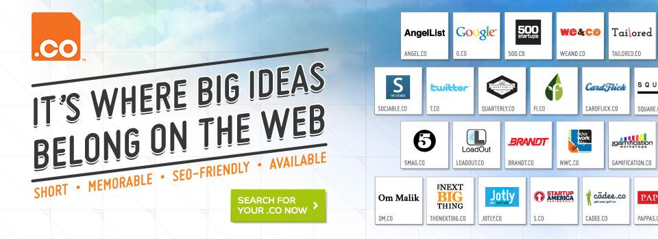 Go Global with a CO Web Address - NiceNIC.NET