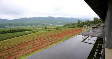 苗栗銅鑼茶廠觀光工廠|銅鑼體驗茶文化,喝茶品茗遠眺山景