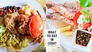 宿霧薄荷島|好吃的餐廳和食物們。來菲律賓體驗在地菲式美食