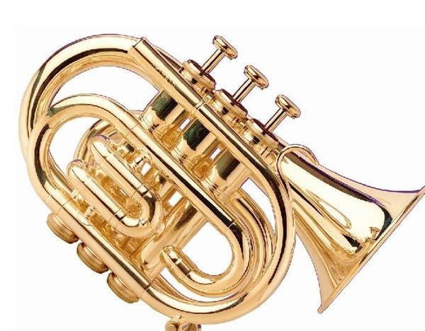 銅管樂器有哪些 銅管樂器介紹 - 愛我窩