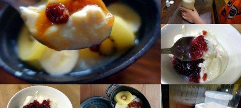 我家安心食|金腸胃的自製優格,原來日本Bruno優格機這麼好用